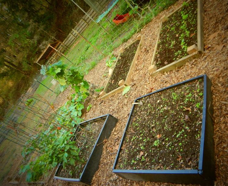 Garden, Done