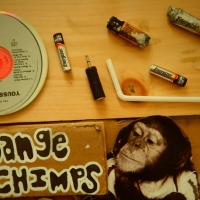 Going Ape for Fair Trade Electronics