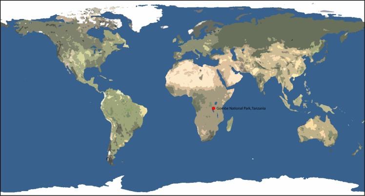 http-::shanahan2.pbworks.com:f:1420633790:1420633790:Gombe-Worldmap_large