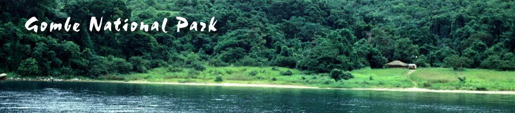 http-::www.tanzania-safari-channel.com:assets:templates:tanzania:headers:gombe-header