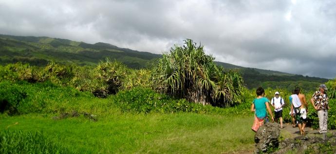 Hiking in Hana