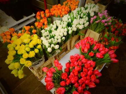 flower shop in NYC flower district